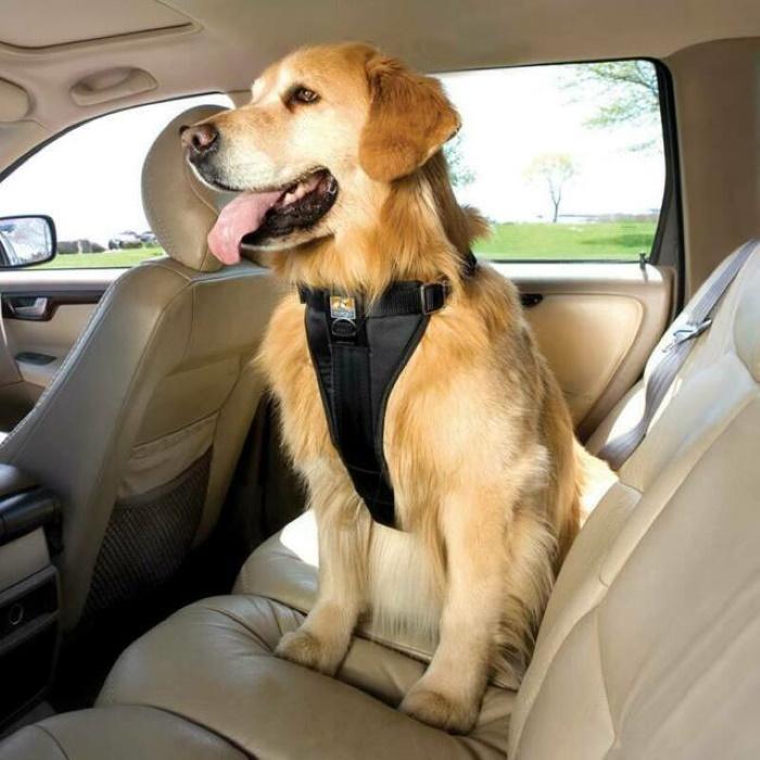 Kurgo Enhanced Strength Tru-Fit Dog Car Harness 3