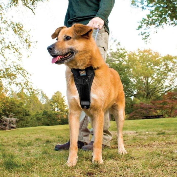 Kurgo Enhanced Strength Tru-Fit Dog Car Harness 4