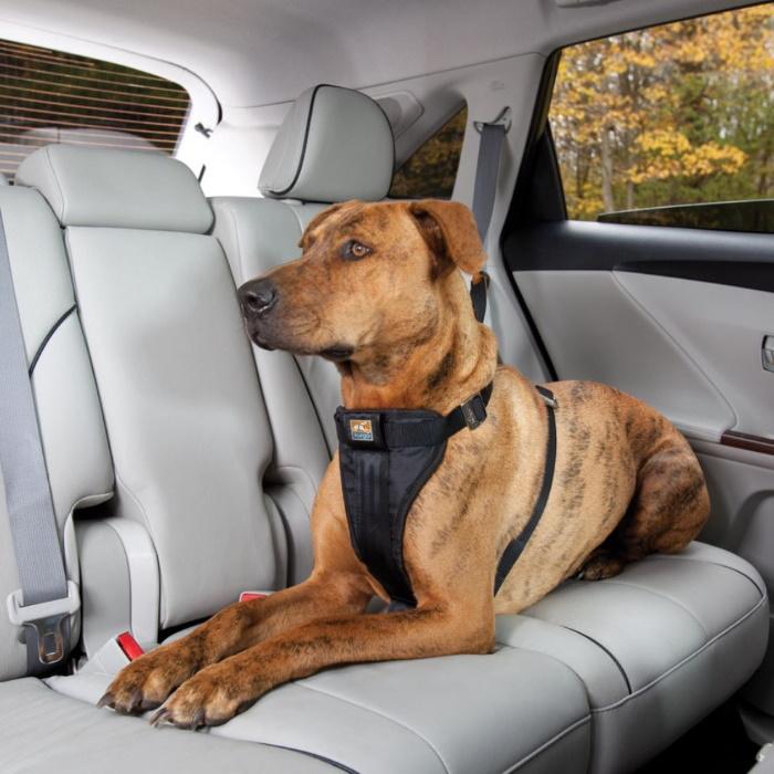 Kurgo Enhanced Strength Tru-Fit Dog Car Harness 8