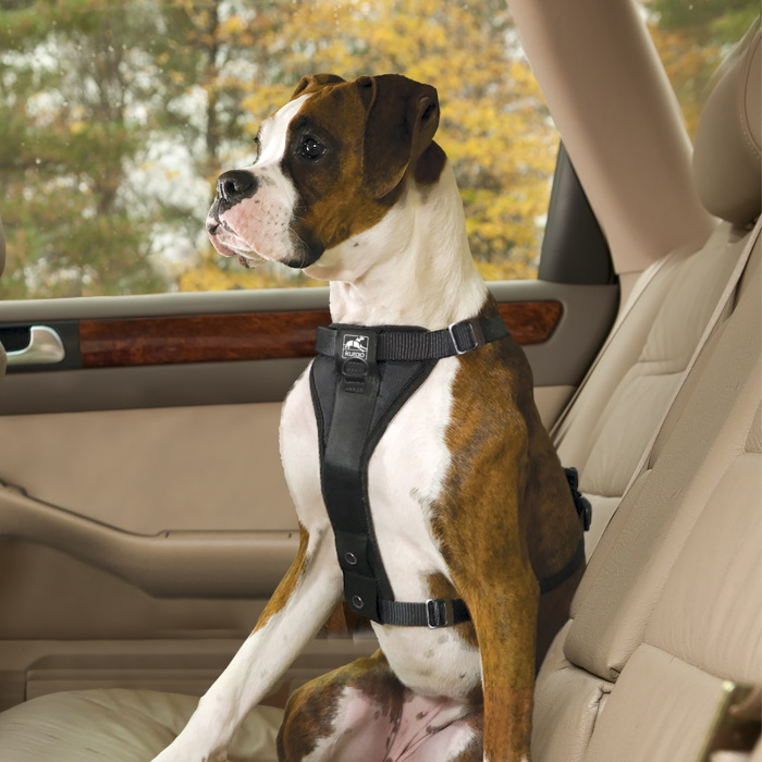 Kurgo Enhanced Strength Tru-Fit Dog Car Harness 9