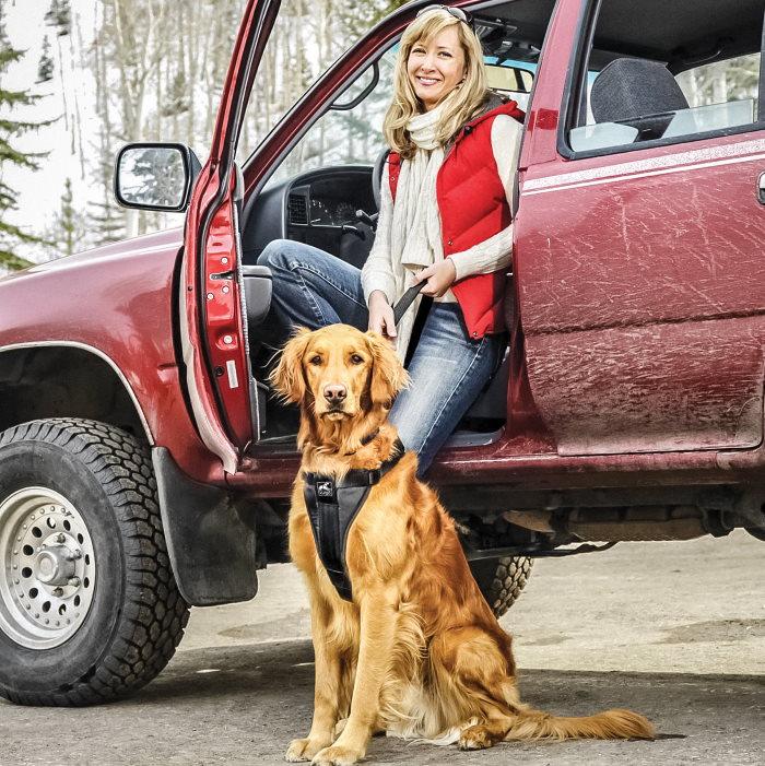 Kurgo Enhanced Strength Tru-Fit Dog Car Harness LS1