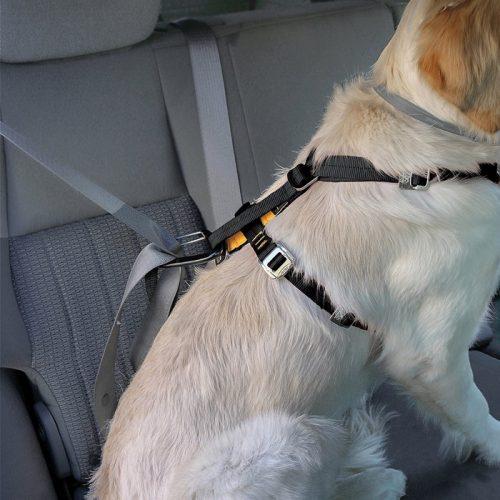 Kurgo Enhanced Strength Tru-Fit Dog Car Harness with Restraint Correct Fit