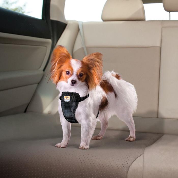Kurgo Enhanced Strength Tru-Fit Dog Car Harness