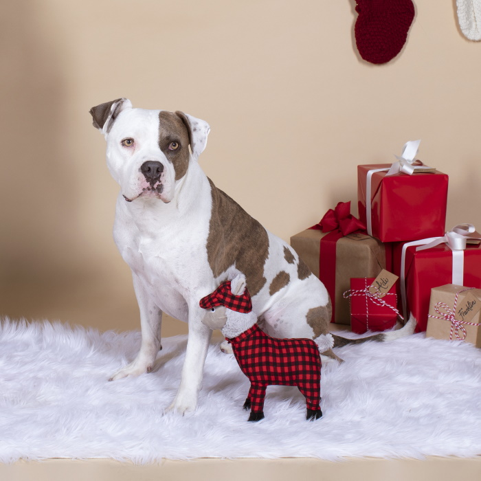 Fringe Studio Christmas Feelin' Festive Pyjama Llama Dog Toy