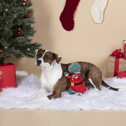 Fringe Studio Christmas Merry Rex-Mas Plush Dog Toy