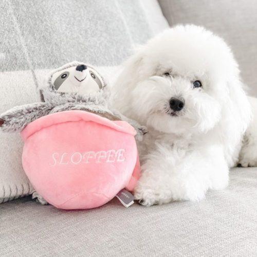 Fringe Studio Sloffee Plush Dog Toy LS