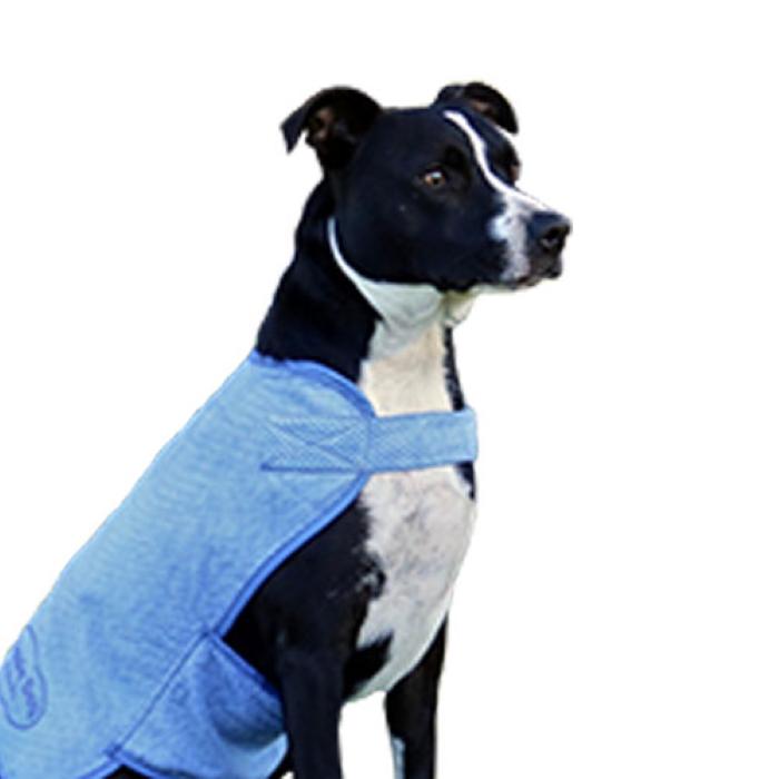 Aussie Dog Wet Vest Dog Cooling Coat Large WET40
