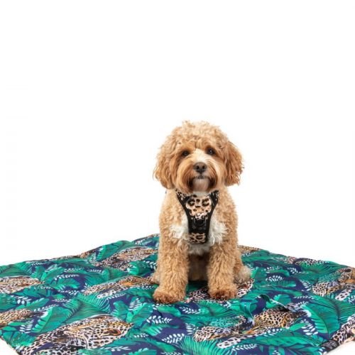Big Little Dogs_On The Go Pet Mat_Luxurious Leopard_ls2