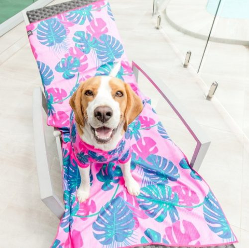 Big and Little Dogs_Beach-Towel_Summer-Lovin-Bailey