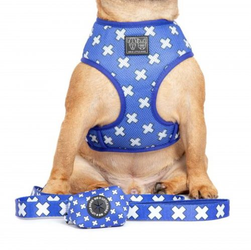 Big and Little Dogs_Poo Bag Holder_Blue Xs_LS