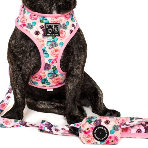 Big and Little Dogs_Poo Bag Holder_I'm a succa for you_LS