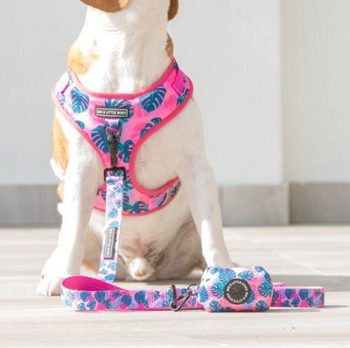 Big and Little Dogs_Poo Bag Holder_Summer lovin'_LS