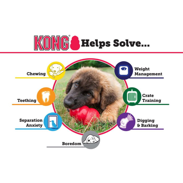 Kong Classic Range_Helps Solve Issues
