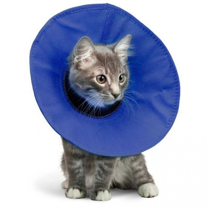 Kong EZ Soft Recovery Collar for cats