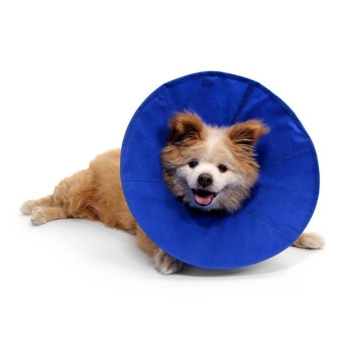 Kong EZ Soft Recovery Dog Collar