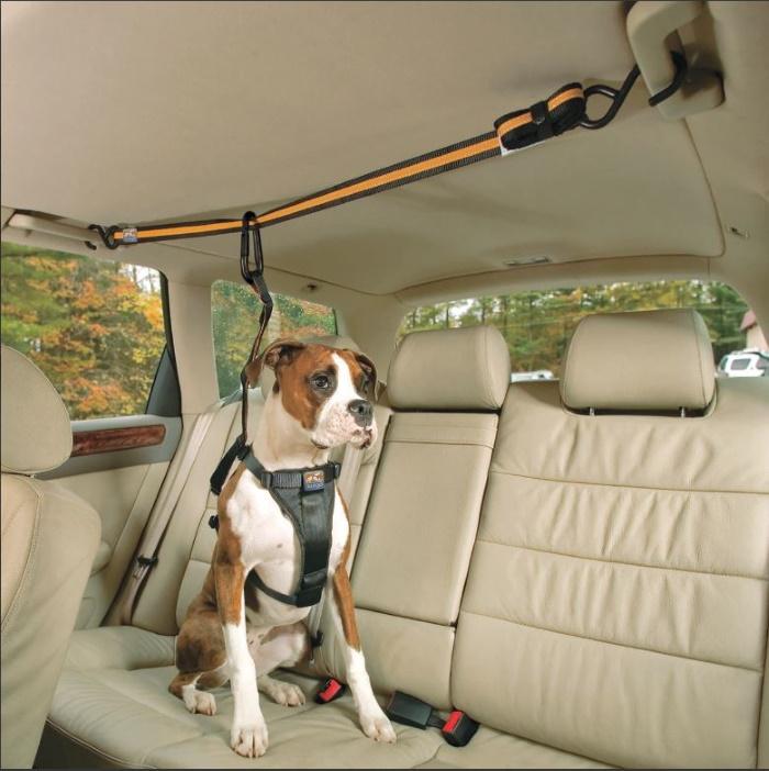Kurgo Auto Zipline Seat belt for dogs