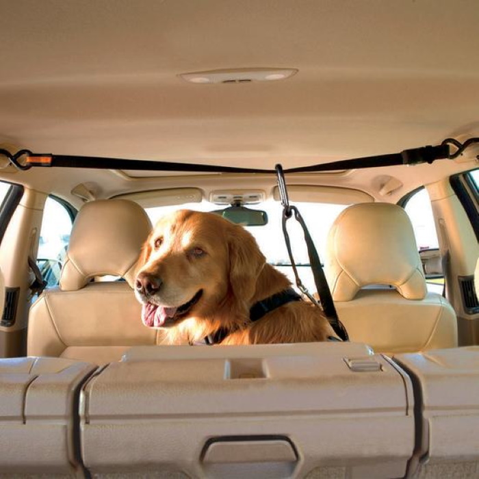Kurgo Auto Zipline Seat belt resatraint for dogs