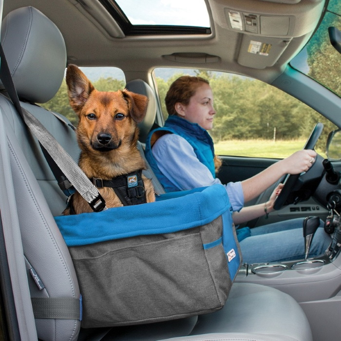 Kurgo Heather Booster seat for dogs