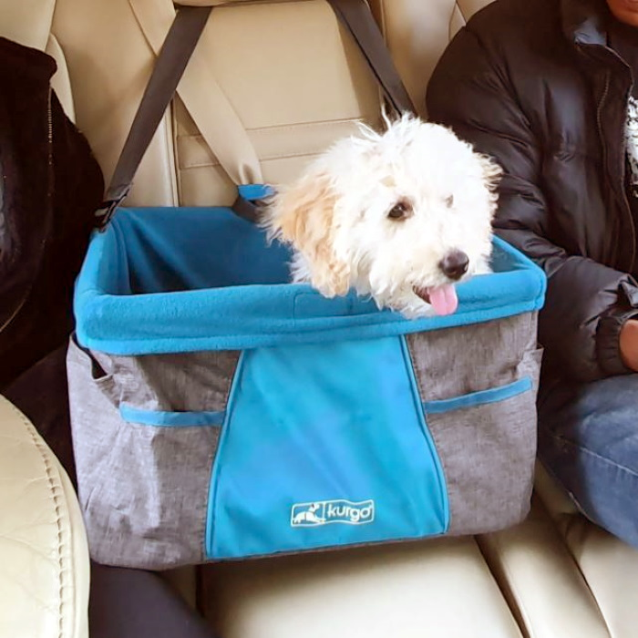 Kurgo Heather Car Booster seat for dogs 3