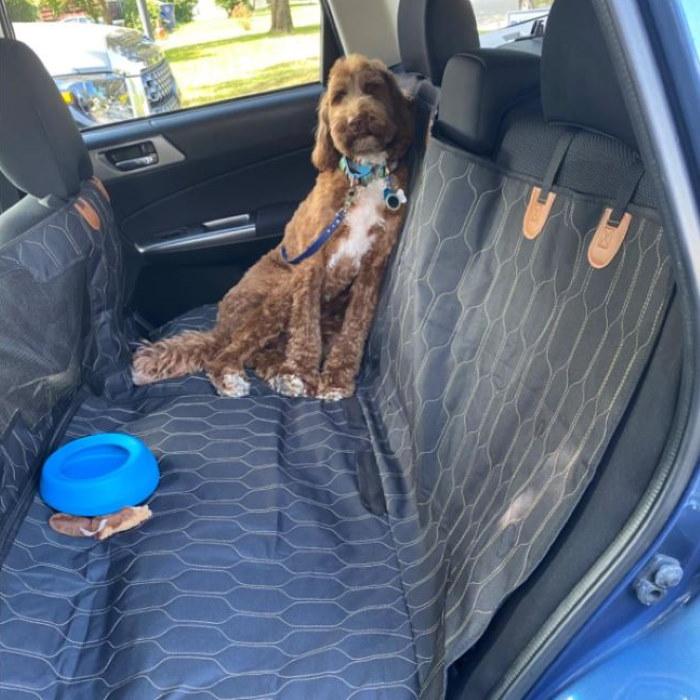 Kurgo Splash Free Water Bowl for Dogs