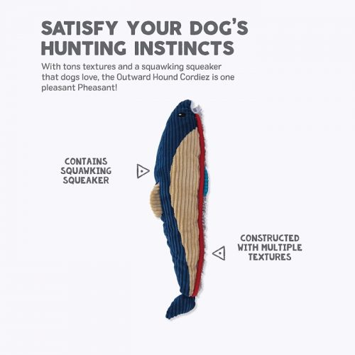 Outward Hound Cordiez Trout Dog Toy Features