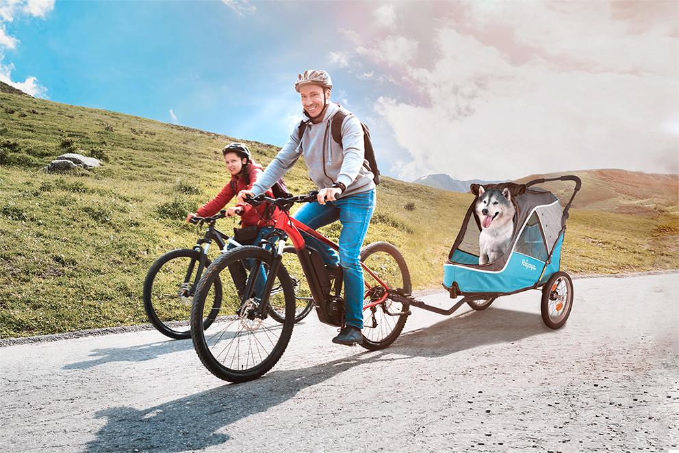 Ibiyaya 2 in 1 bike trailer stroller Blue