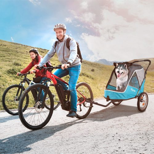 Ibiyaya 2 in 1 bike trailer stroller_Blue_LS