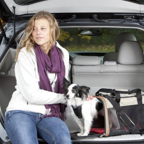 Kurgo Wander Portable Pet Travel Carrier