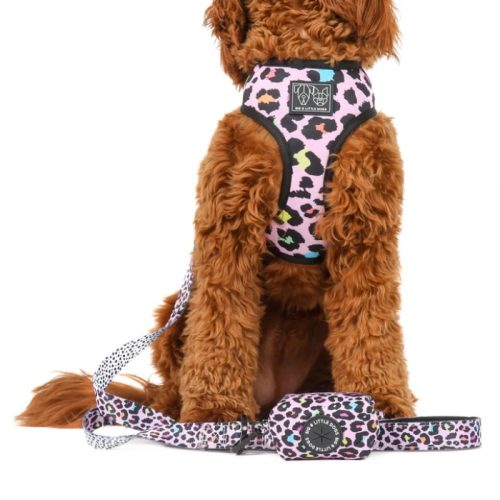 Big and Little Dogs_Poo Bag Holder_Spotted Leopard_LS