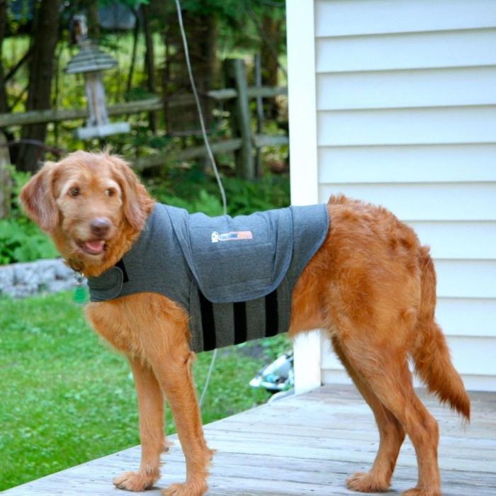 ThunderShirt_for_Dogs_Heather_Gray