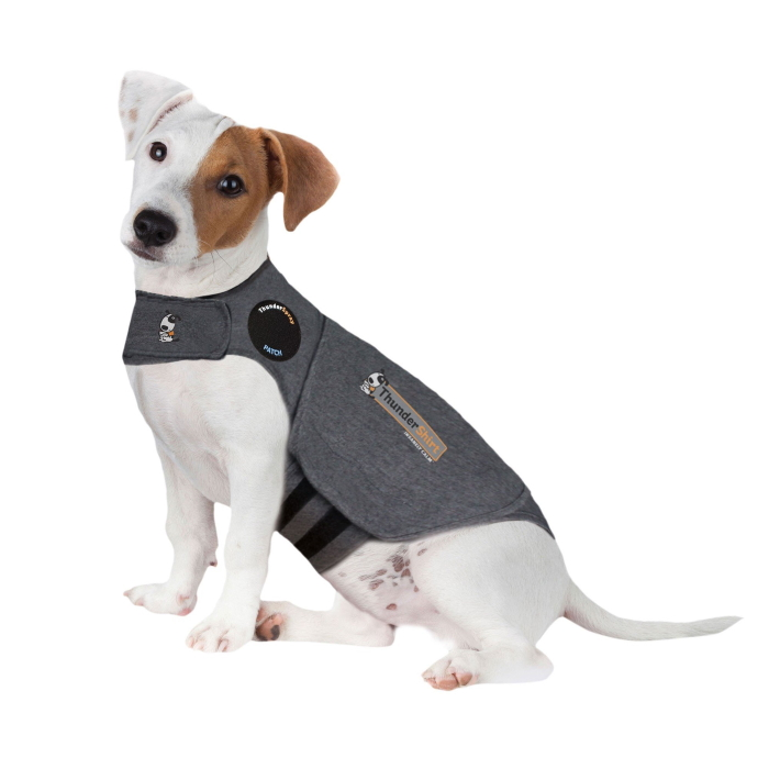 ThunderShirt_for_Dogs_Heather_Gray_Small