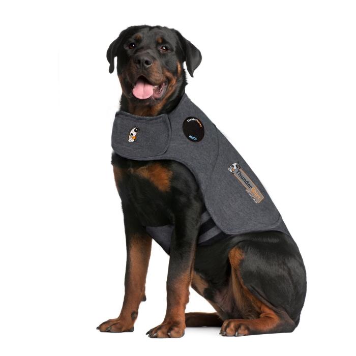 ThunderShirt_for_Dogs_Heather_Gray_XXLarge