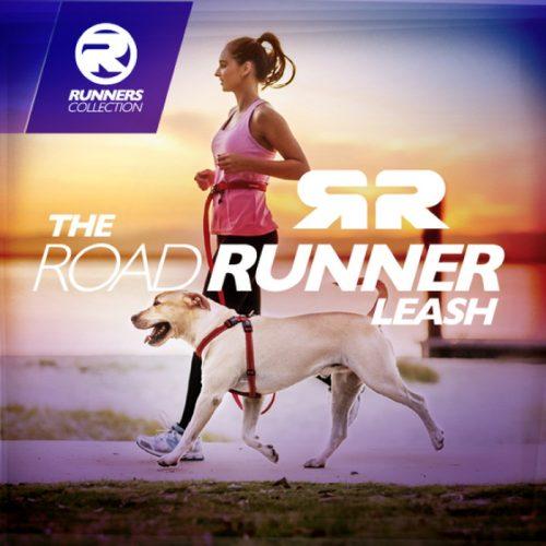 EzyDog Road Runner Dog Leash
