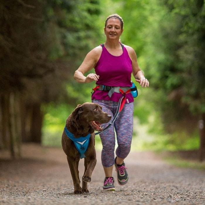 K9 Excursion Kurgo Running Belt_dog lead