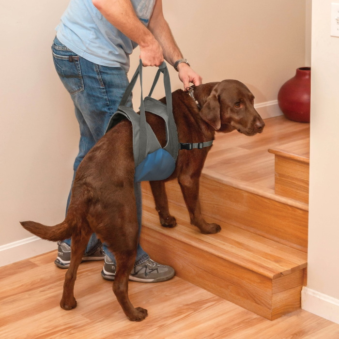 Kurgo Up & About Dog Harness