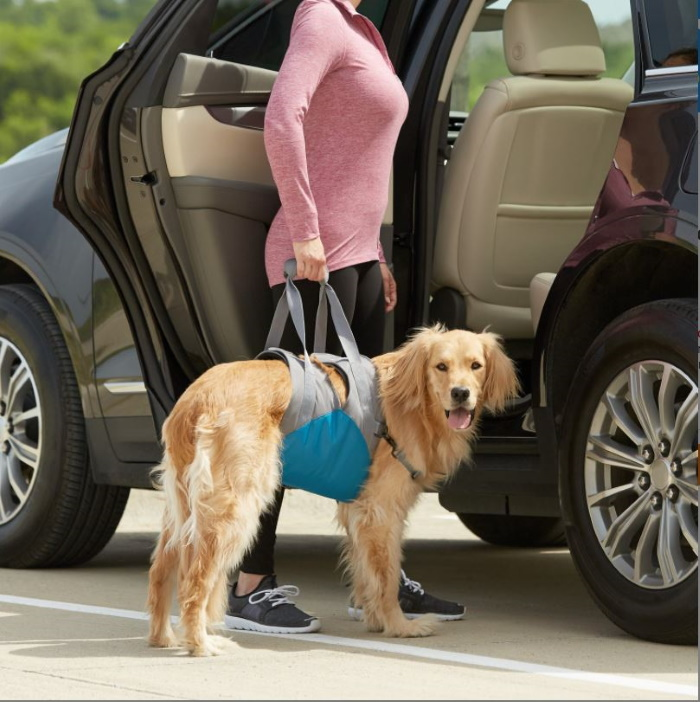Kurgo Up & About Dog Lifter Harness