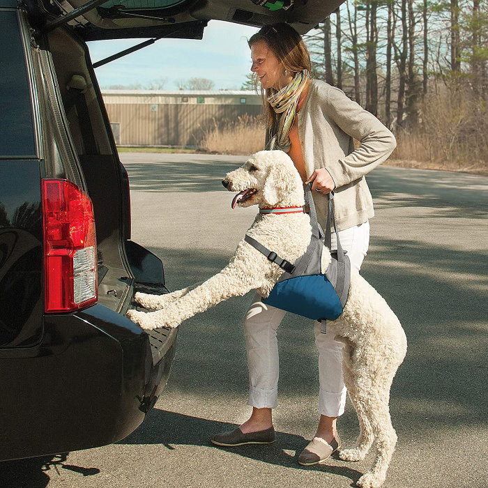 Kurgo Up and About Dog Lifter Harness