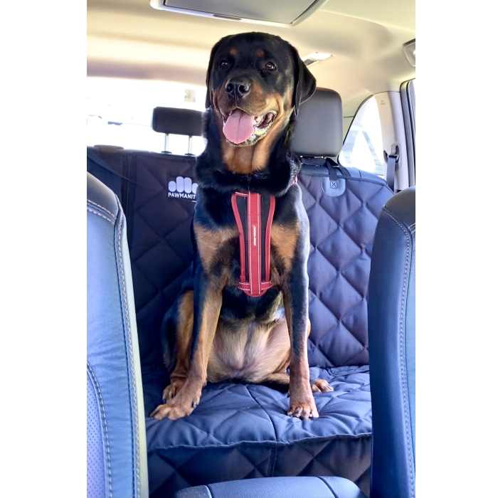 Pawmanity Bench Car Seat Cover for Dogs_Luna