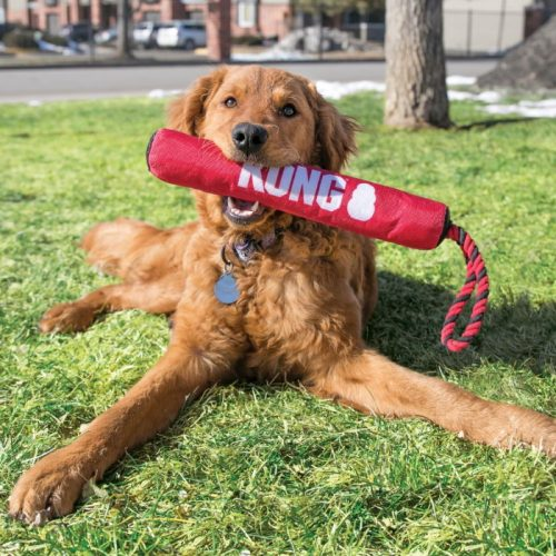 KONG Signature Stick Dog Toy with Rope