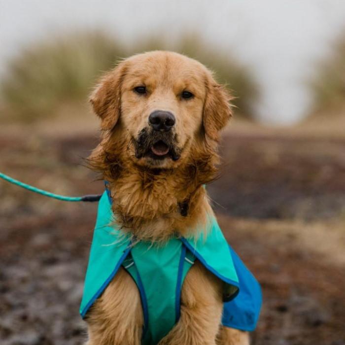 Ruffwear Sun Shower Dog Rain Jacket LS12