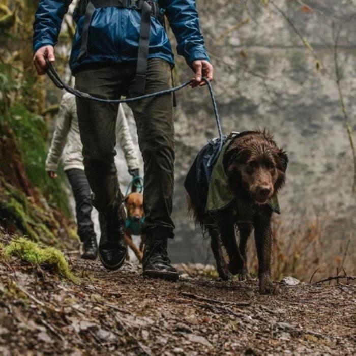Ruffwear Sun Shower Dog Rain Jacket LS3