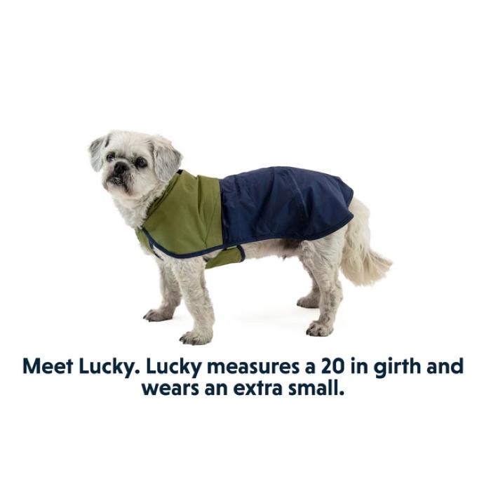 Ruffwear Sun Shower Rain Jacket Lucky