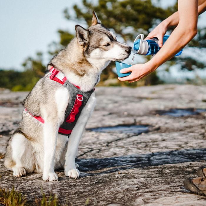 Kurgo Gourd Dog Travel Water Bottle and Bowl_LS