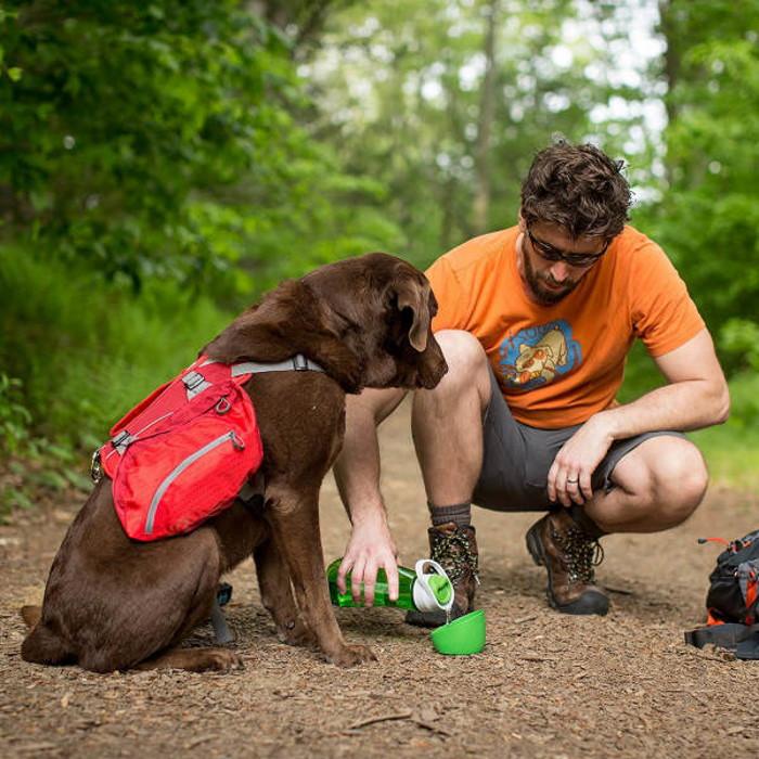 Kurgo Gourd Dog Travel Water Bottle and Bowl_LS1