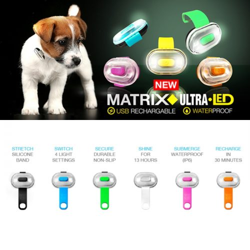 Max and Molly Safety LED Dog Collar Light_Features