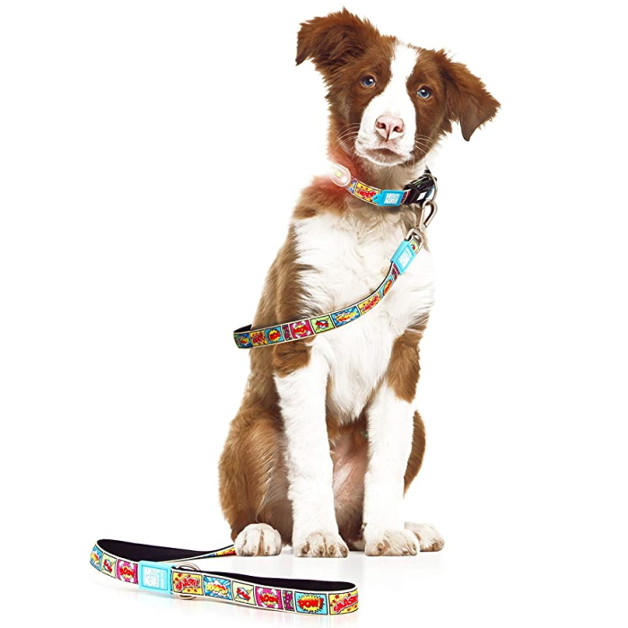 Max and Molly Safety LED Dog Collar Light_LS2