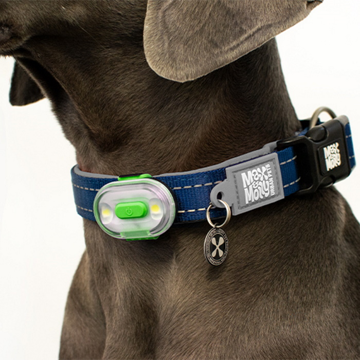 Max and Molly Safety LED rechargable Dog Collar Light_LS